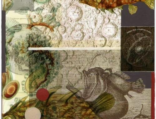 Bettina Forget - Somnium - MoonfishBettina Forget - Somnium - Moonfish