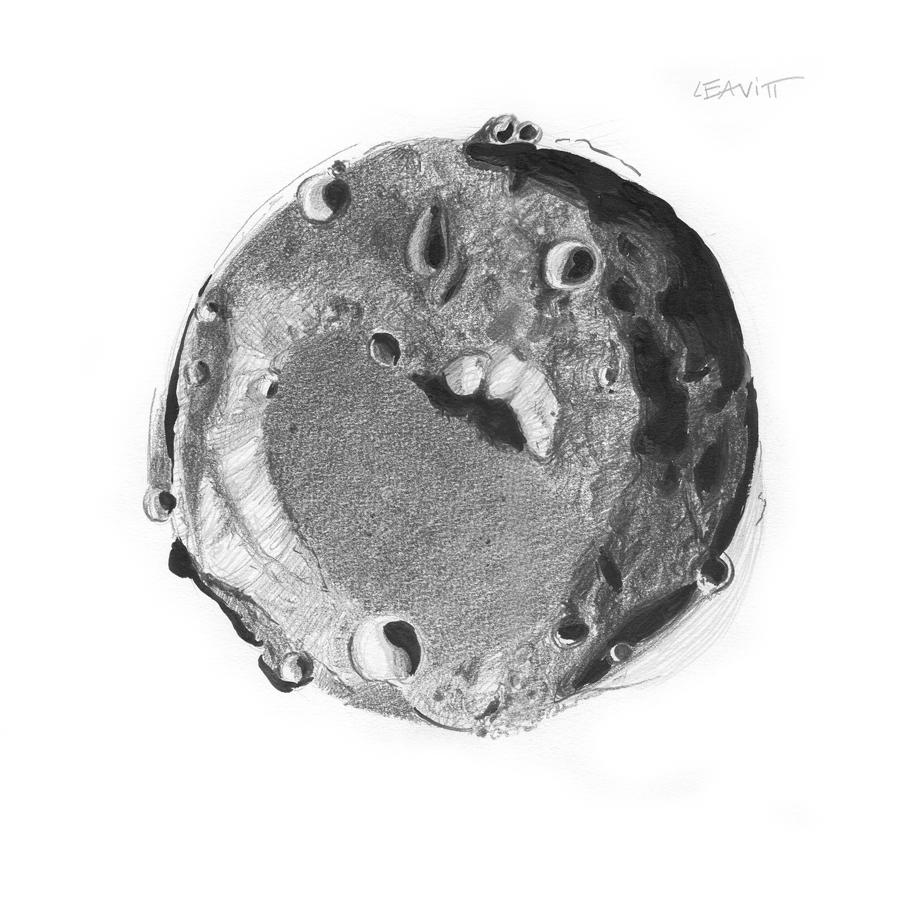 Bettina Forget - Leavitt Crater